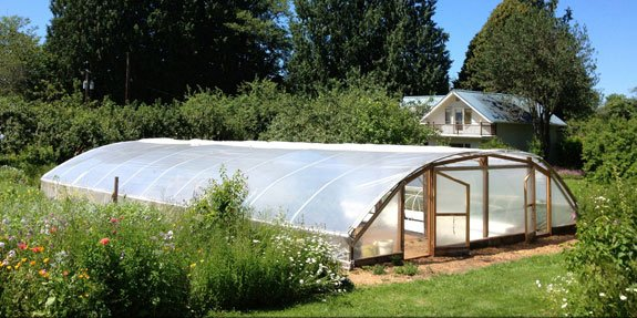 The first Pacific Northwest spirulina microfarm launches near Olympia, Washington. This eco-region has a temperate rainforest climate with warm sunny summers and wet cloudy winters.