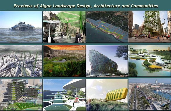 Algae Landscape and Architecture Design