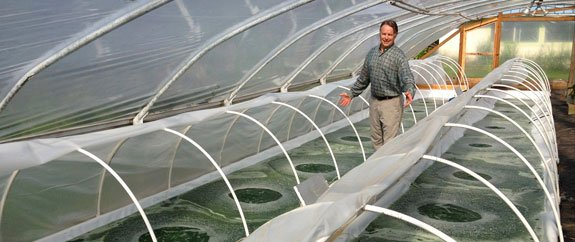 Algae growing ponds have retractable and removable greenhouse covers. In cooler seasons, ponds are covered at night to retain warmth. In summertime, covers are completely removed.