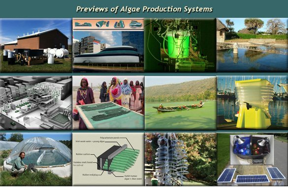 Algae Production Systems