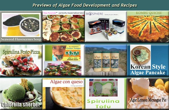 Algae Food Development and Recipes