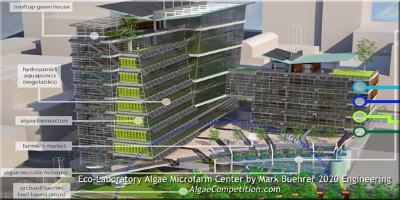 The Algae Microfarm Center was a finalist in the International Algae Competition.