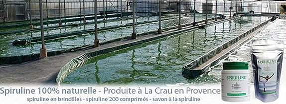 Spirulina Domaine Traverse Greenhouse in the south of France, with products.