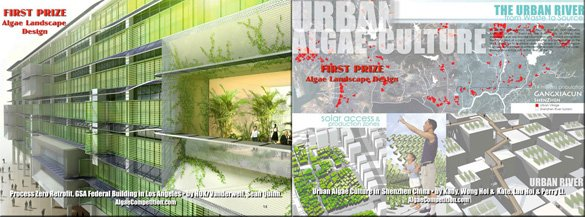 Two winners will share the Algae Landscape Design First Prize ($2000)