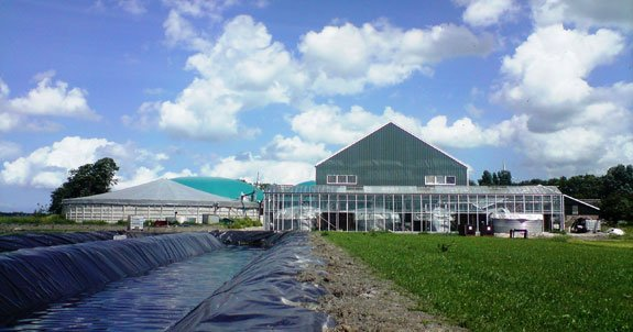 AF&F's demonstration algae production plant is located in Hallum, Netherlands.