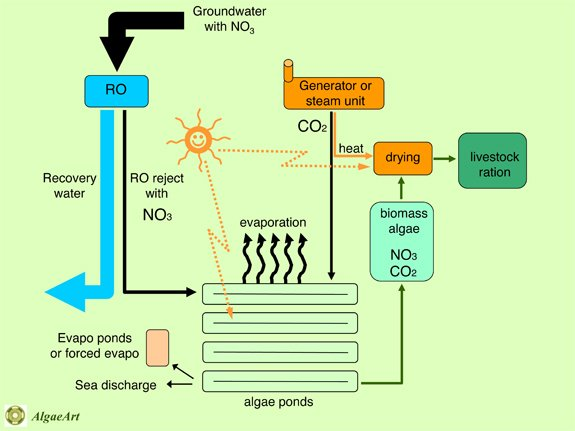 Brine treatment and disposal process diagram