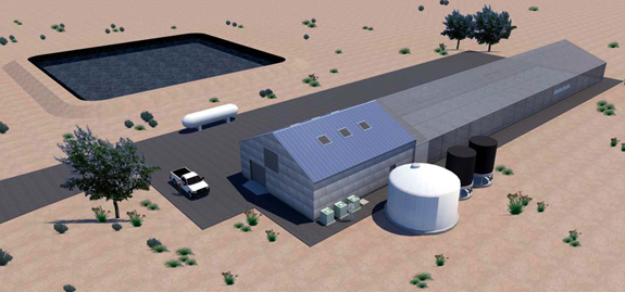 Architect's illustration showing Algae Biosciences' production facilities near Holbrook, Ariz., at completion of its $5-million first phase of expansion.