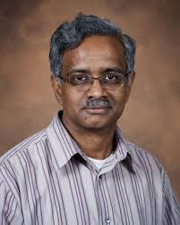 Dr. Bala Rathinasabapathi is a professor in the University of Florida's  horticultural sciences department
