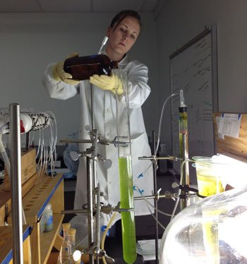 Northern Arizona University sophomore Emily Day pours growth media into an algae-filled column. Day's efforts are part of the ABOR-funded multi-university program.