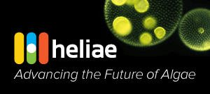 Advancing the future of algae