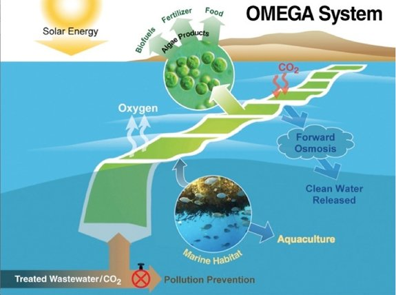 NASA's OMEGA (Offshore Membrane Enclosures for Growing Algae) System