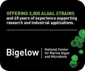 Offering 3,000 algal strains...