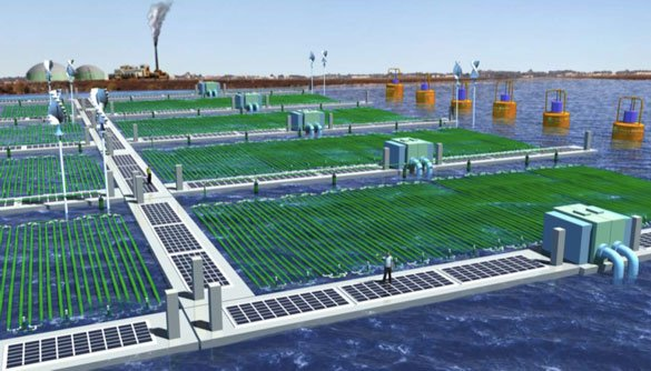 Rendering of an OMEGA installation at a coastal urban wastewater treatment center