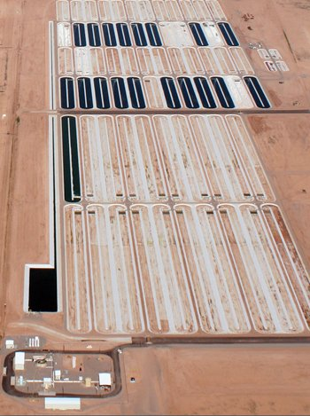 An aerial view of Sapphire Energy's Green Crude Farm.
