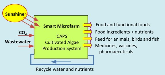 Smart Microfarm Food and Medicine Production Platform