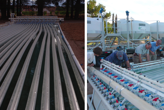 Solix Biofuels photobioreactor beds at New Mexico State University