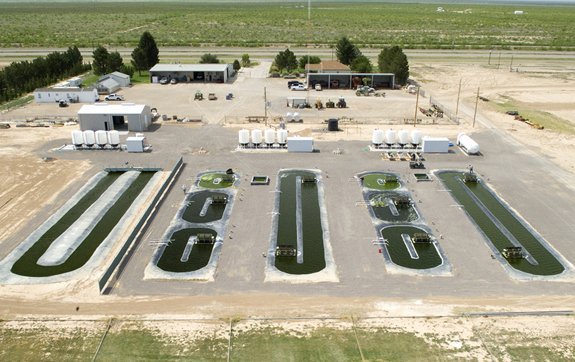 Texas A&M's Algae Research Facility at Crane High, in Pecos, Texas