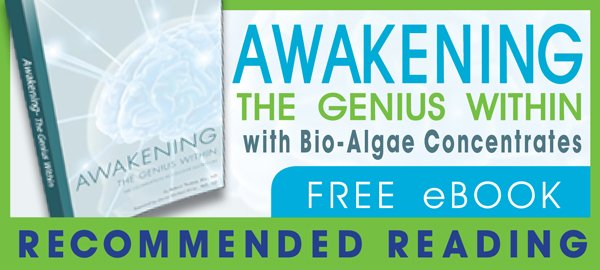 Free eBook — Awakening the Genius Within