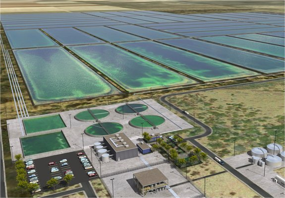 Sapphire Energy's Integrated Algal Biorefinery, cultivation and extraction facility, proposed for Columbus, New Mexico