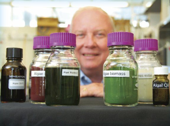 Milton Sommerfeld, co-director of the Arizona Center for Algae Technology and Innovation (AzCATI) at Arizona State University in the lab with samples of algae biomass, algae oil, residuals and other products from algae biomass.